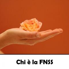 Chi è la FNSS