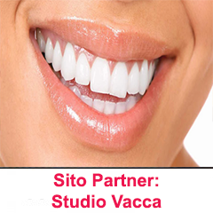 Partnership: Studio Vacca